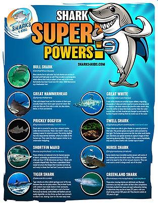 S4K_Super_Powers_Poster.jpg