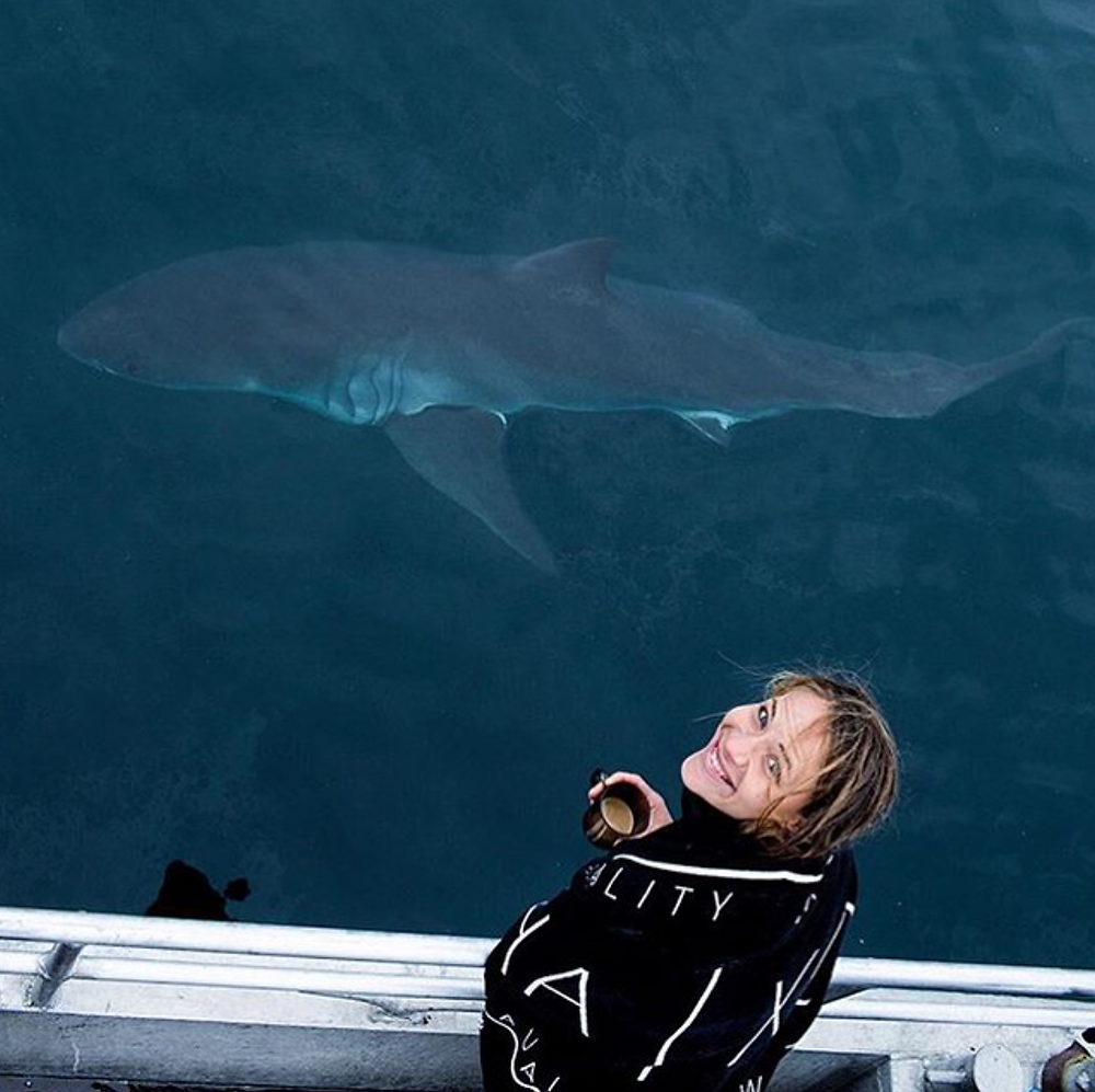Jilly and a great white shark credit: Mike Coots