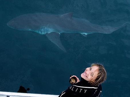 Meet Sharks4Kids Regional Ambassador Jilly Wenderlich