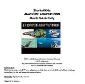 shark adaptation lesson.jpg