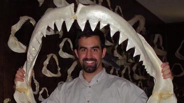 Sink your Teeth into Shark Biology with Joshua Moyer