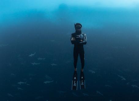 Meet Underwater Photographer André Musgrove