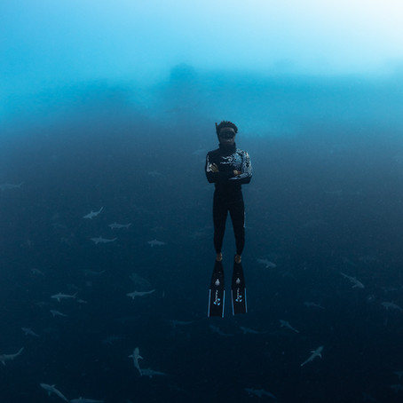 Meet Underwater Photographer André Musgrove
