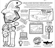 Save sharks coloring sheet