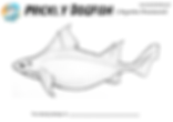 Prickly dogfish coloring page