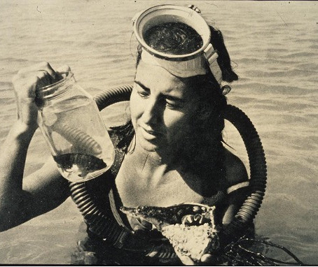 "My Science Hero: Eugenie ""The Shark Lady"" Clark, American Ichtyologist"