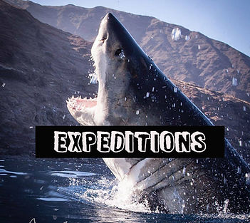Expeditions.jpg