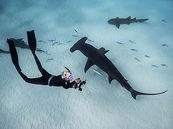 Jillian freediving hammer 1.jpg