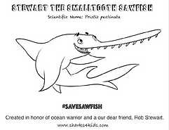 Smalltooh sawfish coloring sheet