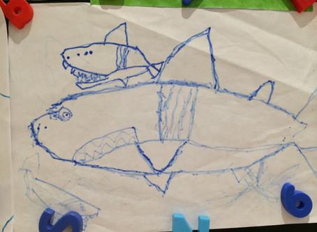 "Sharks4Kids July FIN Tastic Allstar of Month: Adam ""Ady Shark Boy"""