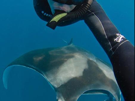 Meet Sharks4Kids Media Team Member Andy Murch