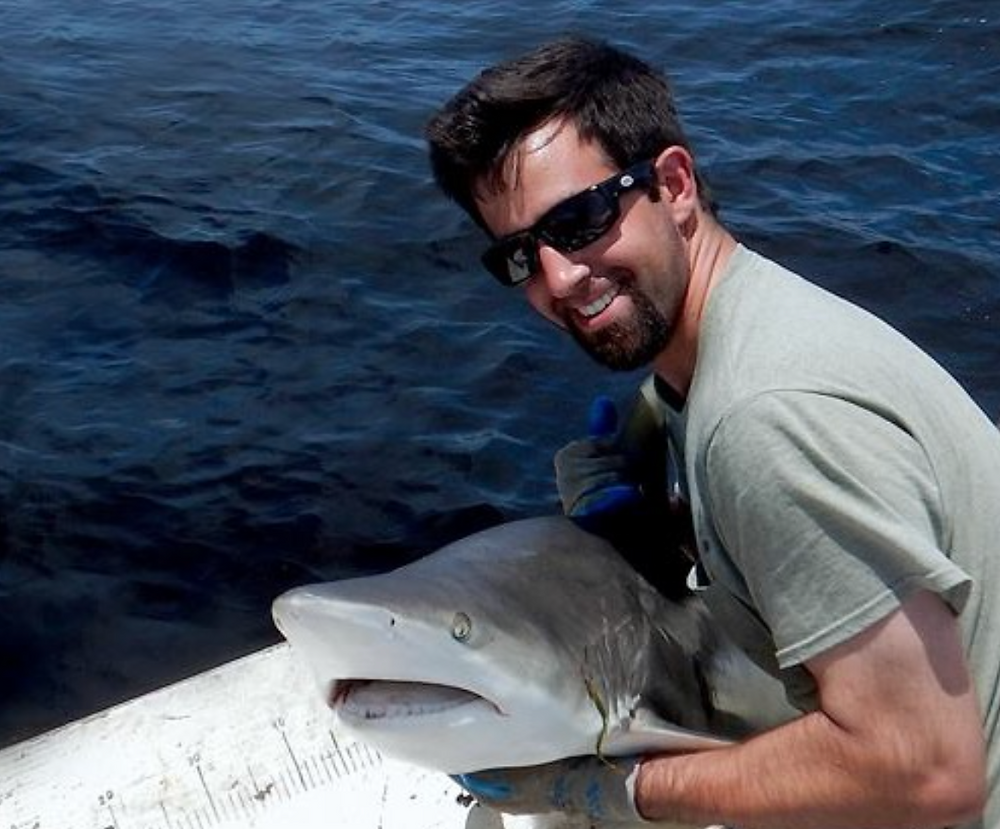 Josh ready to release a tagged shark
