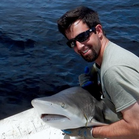 Shark Education: Meet Biologist Joshua Moyer