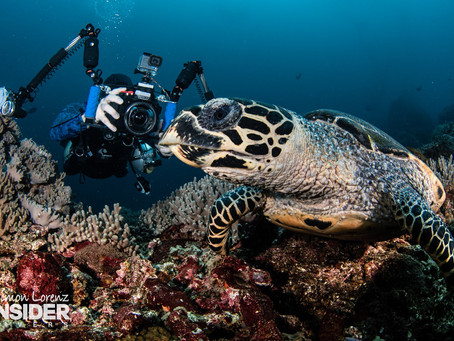 Meet Dive Ninja Expeditions Founder Jay Clue