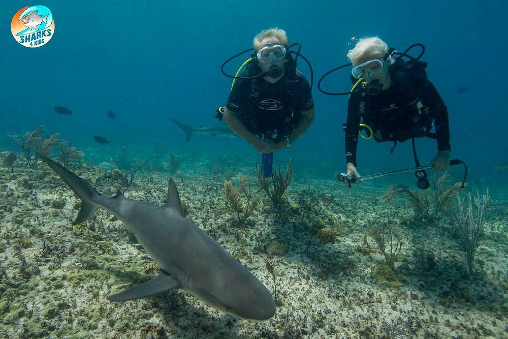 Duncan and Jillian shark diving Credit: Deano Cook