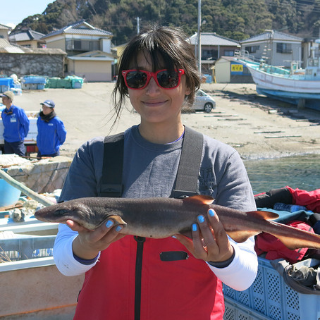 Shark Week: Meet Biologist Vicky Vásquez