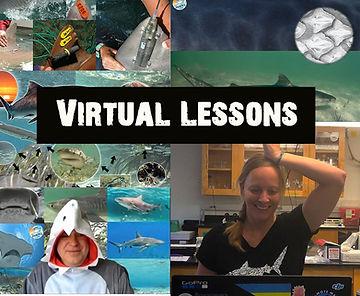 Virtual lessons .jpg