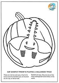 sawfish pumpkin craft.jpg