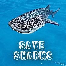 Save Sharks.jpg