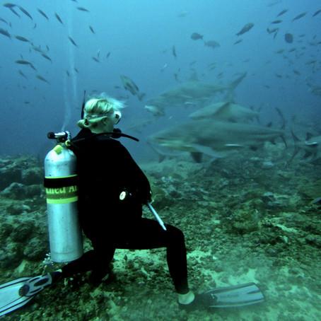 Shark Week: Meet Biologist Lindsay Graff