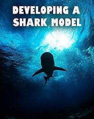 shark model .jpg