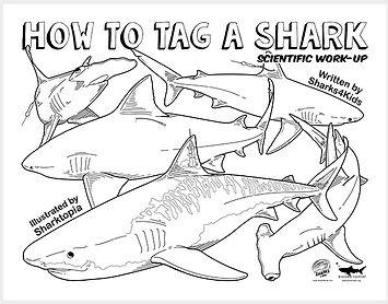 how to tag a shark activity.jpg