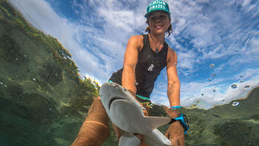 Tail of Two Sharks with Dr. Jodie Rummer