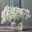 Thumbnail: Omakase Baby's Breath Bouquet