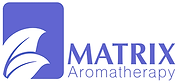New Matrix Logo Dark Blue.png