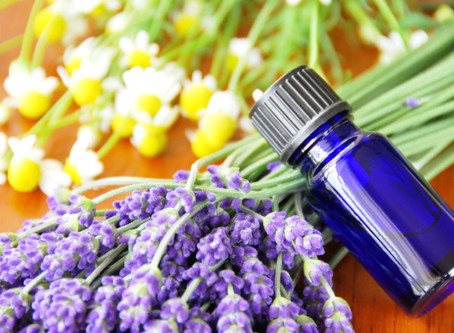 5 Essential Oils for Immune System Support