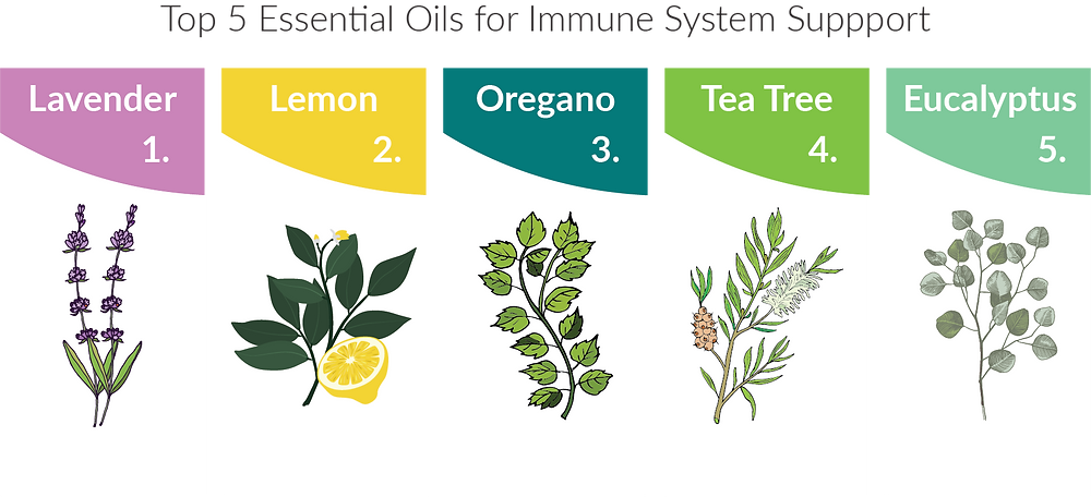 Top 5 Essential Oils for Immune System Support