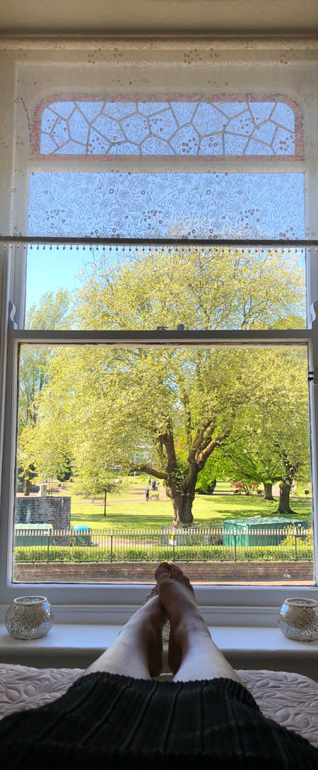 View from Acupuncture Room.JPG