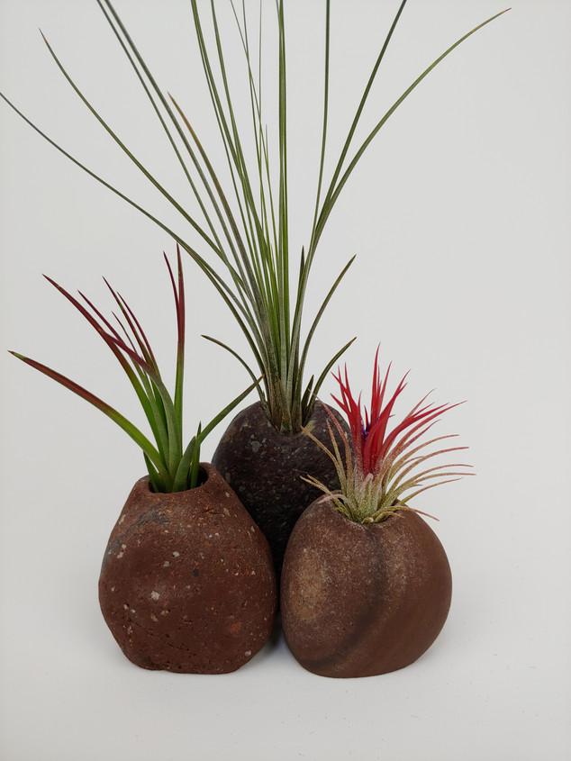 Trio of Mini Bud Vases