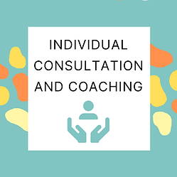 Individual Consultation and Coaching.png