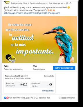 Promocion-Facebook-PNG.png