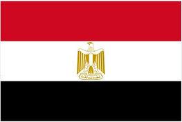 Egyptian Flag.JPG
