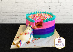 chubby unicorn ombre