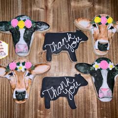 watercolor cow cookies2.jpg