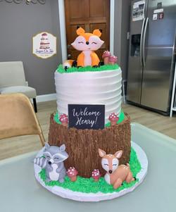 woodland baby shower cake-brenda berry