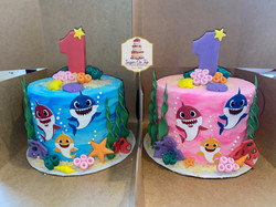 twins baby sharks smash cakes