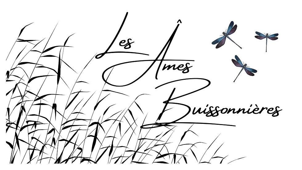 Les Âmes Buissonnières.jpg
