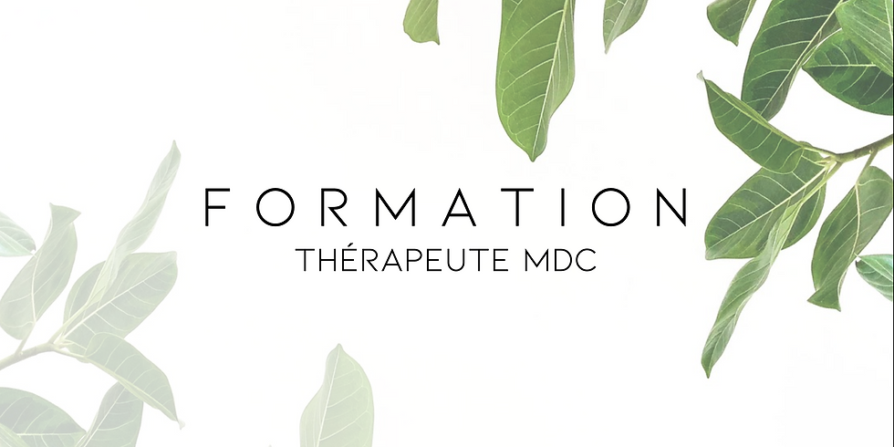 Formation thérapeute MDC