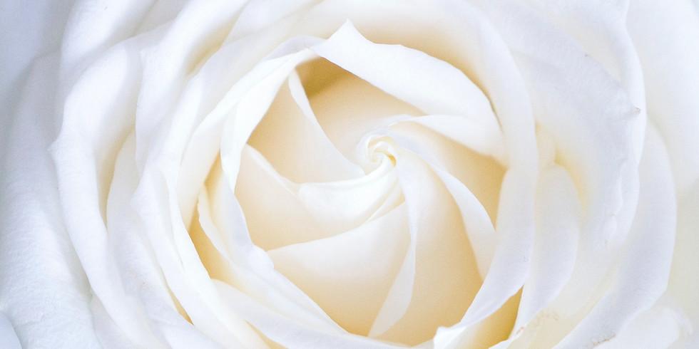 Initiation aux soins de Rose