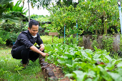 Chef-Kla-at-the-farm-1350x900.jpg