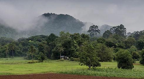 Klong Phai Farm.jpg