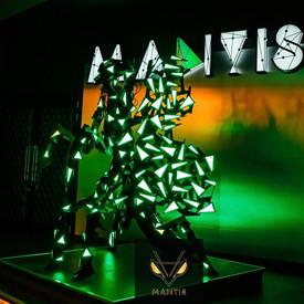 mantis22