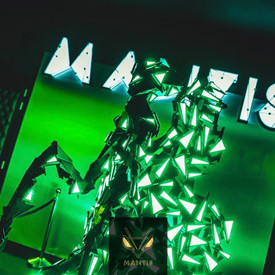 mantis24