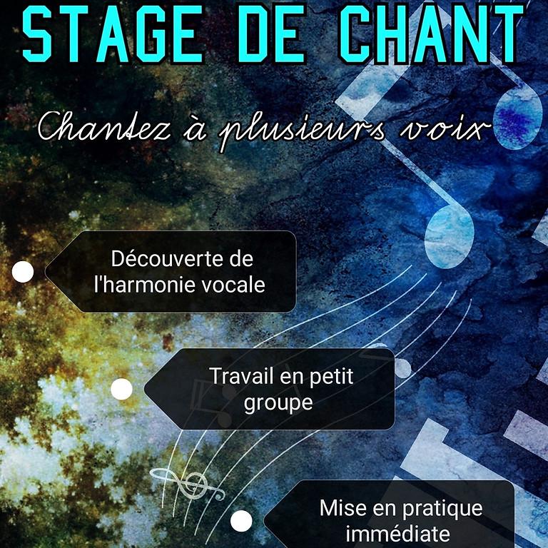 stage de chant: HARMONIES VOCALES (1)