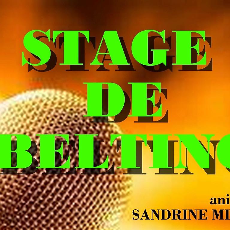STAGE DE BELTING