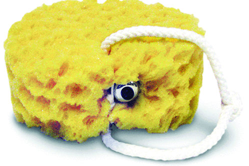 VIbrating Foam Sea Sponge